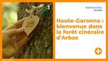 Haute-Garonne : bienvenue dans la forêt cinéraire d'Arbas