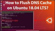 How to Flush DNS Cache on Ubuntu 18.04 LTS?