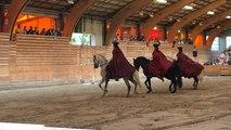 Spectacle équestre «cheval mon histoire»