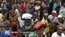 L'épidémie Ebola décrétée urgence de santé publique