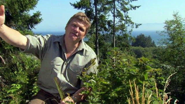 BBC Northern Wilderness (6of6) Journeys End