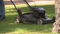 CNN: Woman's neck sliced in freak lawnmower accident