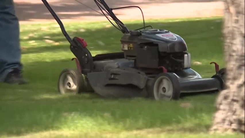 CNN: Woman's neck sliced in freak lawnmower accident