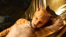 Cats with Taylor Swift - Official Trailer