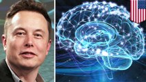 Elon Musk wants to merge humans and AI with brain implant