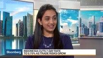 Indonesian Bonds Should Remain Very Attractive, Says Continuum Economics's Chanana