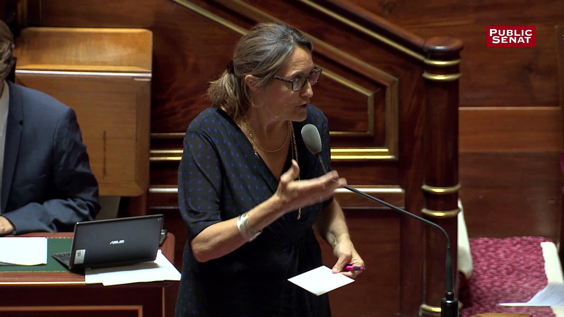 Projet de loi Energie climat:  Sophie Primas évoque