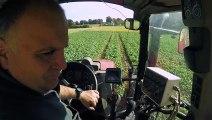 Phytosanitaires en agriculture : réduire les risques pour la santé et l'impact sur l'environnement