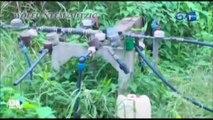 RTG/Atelier de restitution et de validation des reformes dans le secteur de l'eau et de l'électricité