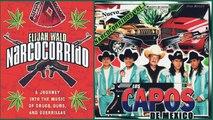 """Narcocorridos"" : quand des musiciens mexicains chantent les trafiquants de drogue"