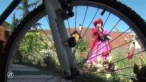 INSOLITE: Il transforme son jardin en univers d'Alice au Pays des Merveilles