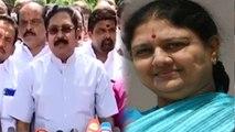 TTV Dinakaran : சசிகலாவை வெளியே கொண்டு வர சட்டரீதியான முயற்சிகள்- டிடிவி தினகரன்- வீடியோ