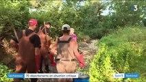 Sécheresse : 70 départements en situation critique