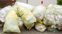 Panama Bans All Single-Use Plastic Bags