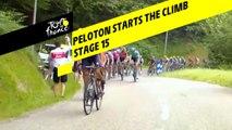 Le peloton a attaqué les premières pentes / The peloton has started the climb - Étape 15 / Stage 15 - Tour de France 2019