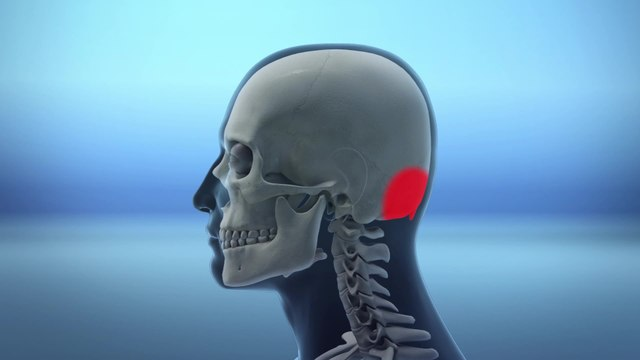 Poor posture due to smartphone use leads to 'horn bone' growth in skull