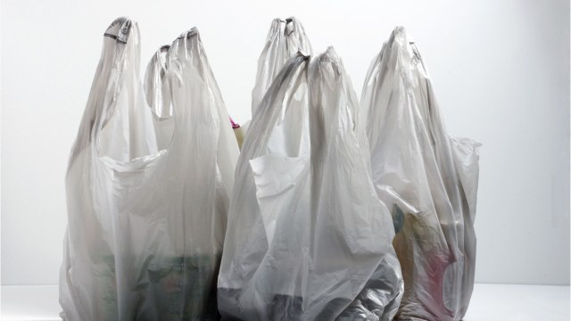 Panama Becomes First Central American Country To Ban Single-Use Plastic Bags
