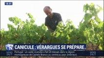 Comment se préparent les habitants de Verargues à ce nouvel épisode caniculaire et où il avait fait 46°C en juin ?