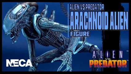 NECA Alien Vs Predator Arachnoid Alien Figure Review