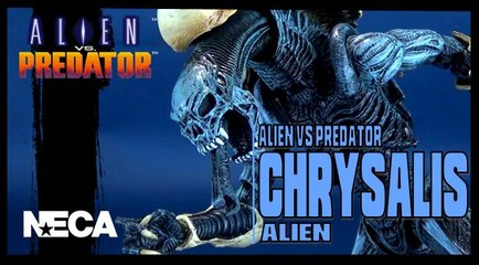 NECA Alien Vs Predator Chrysalis Alien Figure Review