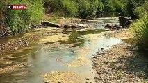Sécheresse : 73 départements concernés par des restrictions d'eau