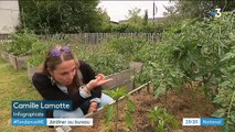 Entreprises : jardiner au bureau