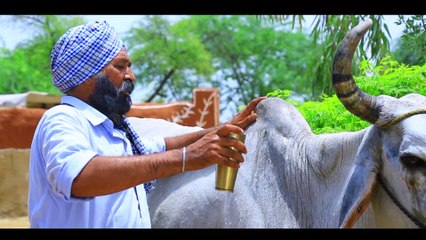 Anantpal Billa ll Gadde Balad ll (Full Video) Anand Music II New Punjabi Song 2019