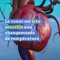 Avec la canicule, faites attention à votre coeur !