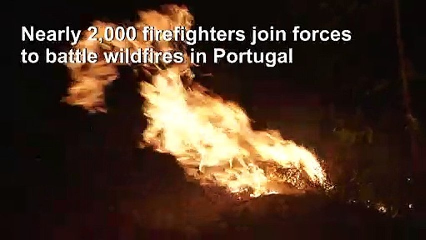 Nearly 2,000 firefighters battle forest fires in central Portugal