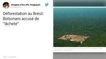 Déforestation : Le président brésilien Jair Bolsonaro accusé de « lâcheté »