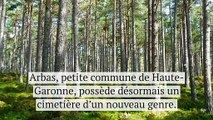Laissez vos défunts reposer aux pieds des arbres dans la toute première forêt cinéraire de France