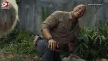 Dwayne Johnson promises absurd movie