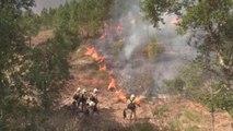 Portugal refuerza el combate contra el fuego: 1.400 bomberos y medios aéreos