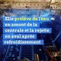 Canicule : pourquoi EDF arrête des réacteurs nucléaires ?
