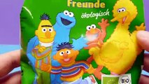 Sesame Street Nut Cookies for Ernie's Friends