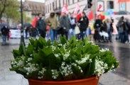 Frankreich: Woher kommt die Tradition der Maiglöckchen am 1. Mai?