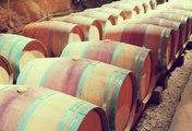 Der teuerste Wein der Welt kommt aus Frankreich!