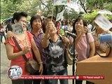 Logan looks at 'Pasampol ng Patrol' in Baclaran