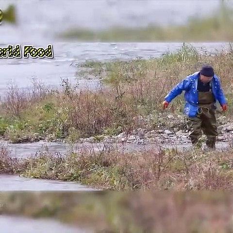 Best Cast Net Fishing Video
