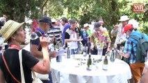 Les vignerons de l'Anjou noir et de l'Anjou blanc se rapprochent