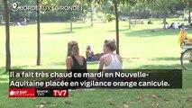 Le Zap Nouvelle-Aquitaine du 23 juillet