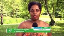 Budget Participatif - Une terrasse végétale à la Villeneuve