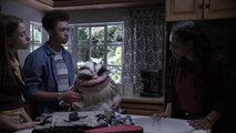 Critters Attack! (2019)  Bianca The Female Critter Exclusive Clip - Horror Monsters