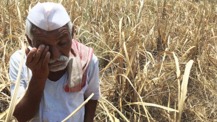 The Agrarian Unrest 2: Why loan waivers are not a fix and the appeal of Swaminathan formula
