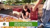 Yeni Malatyaspor'da sıradışı forma tanıtımı