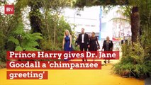 The Friendship Between Prince Harry And Dr. Jane Goodall