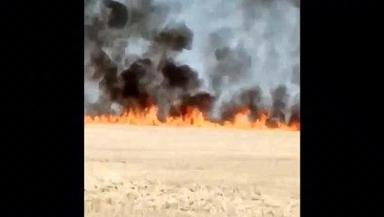 Incendie dans un champ à Argançon
