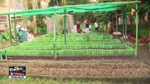 Libreng bakuna kontra tigdas sa Sta. Rosa, Laguna