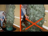 These 9 Christmas Trees Certainly Won't Be Losing...