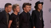 Louis Tomlinson upset by One Direction split story